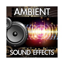 Finnolia Productions Inc | Sound Packs | Mp3 Wav Download